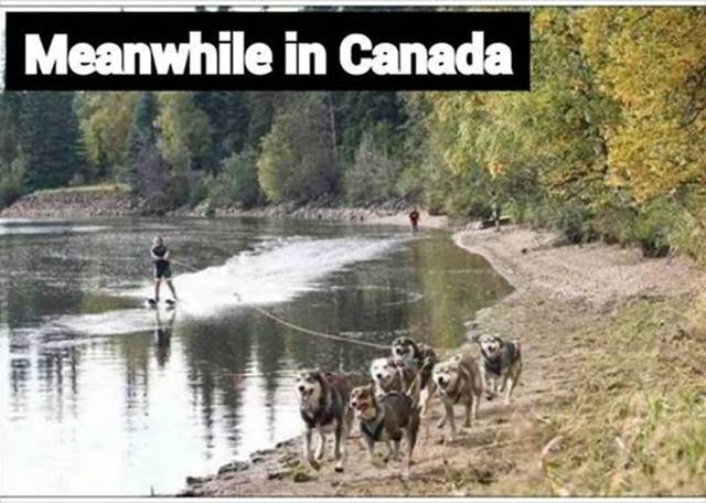 Click image for larger version.  Name:canada ski.jpg Views:41 Size:51.0 KB ID:130095