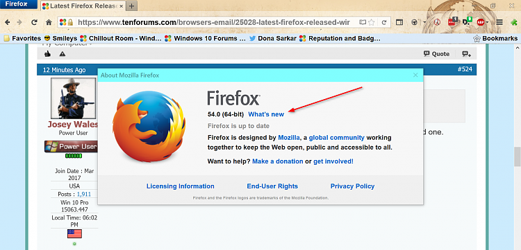 Latest Firefox Released for Windows-2017-06-29_18h04_57.png