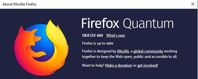 problems with Firefox and Chrome-ff.jpg