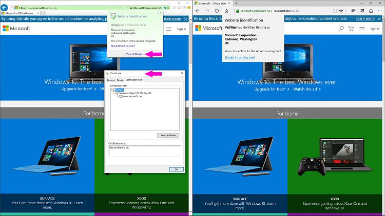 How Can You View The SSL/TLS Certificate in Microsoft Edge-show-tls-certificate.jpg
