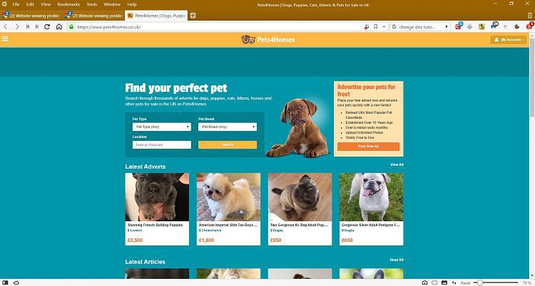 Website viewing problems.-pets4homes-vivaldi.jpg