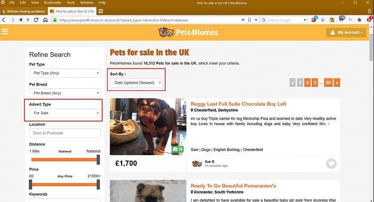 Website viewing problems.-pets-sale-uk-_-pets4homes-vivaldi.jpg