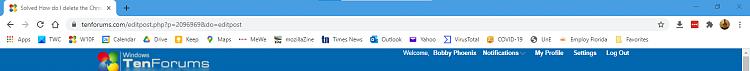 How do I delete the Chromium Edge 'other favorites'?-image.png