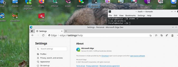 Latest Microsoft Edge released for Windows-screenshot_20210416_083944.png