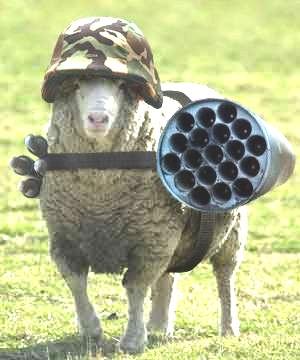 Click image for larger version.  Name:pecora ben armata agnello due lupi benjamin frenklin aforismi adagi cannone elmetto cucciola cuc.jpg Views:67 Size:29.7 KB ID:240701