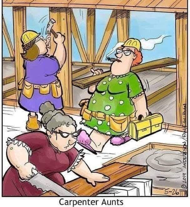 Funny Picture Thread [12]-aunts.jpg