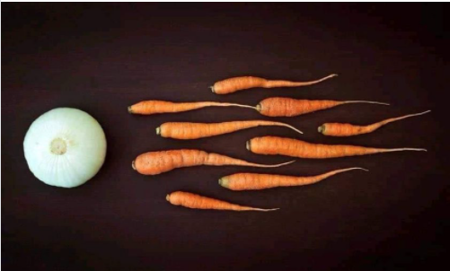 Funny Picture Thread [12]-onion-carrots.png