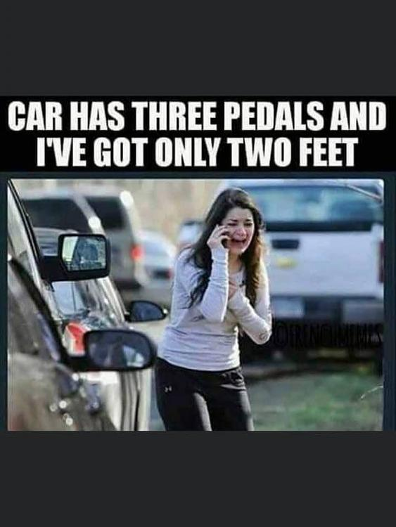 Funny Picture Thread [12]-many-pedals.jpg