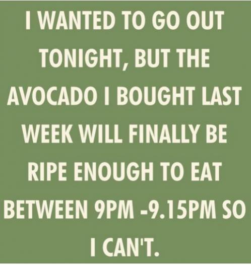 Funny Picture Thread [14]-avacado-ripe-tonight.jpg