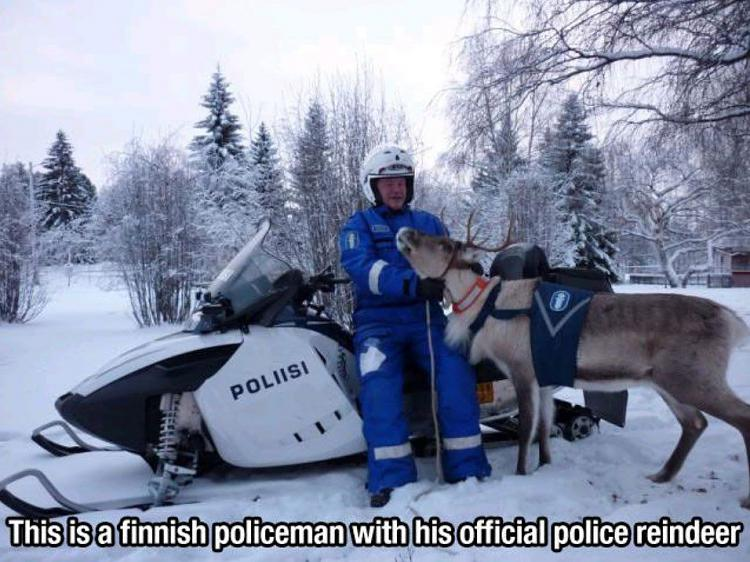 Funny Picture Thread [14]-police-lapland.jpg