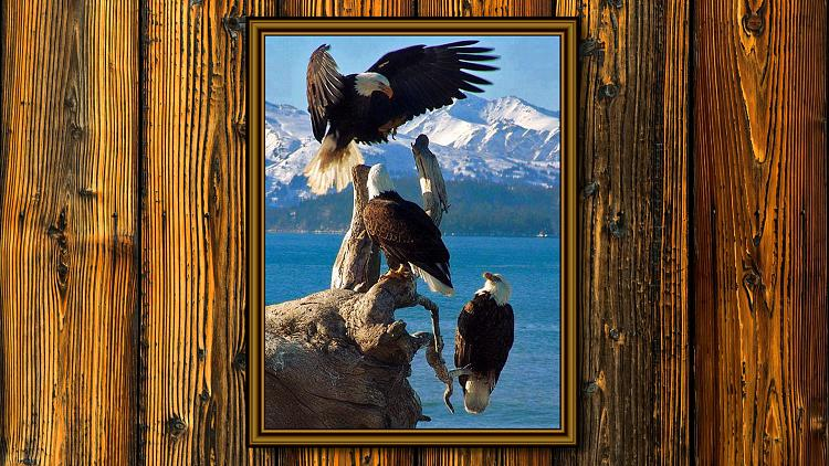 Click image for larger version.  Name:Eagles waood wall.jpg Views:6 Size:426.8 KB ID:133941