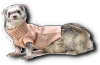 Click image for larger version.  Name:Star Ferrit 2.png Views:27 Size:11.0 KB ID:138877