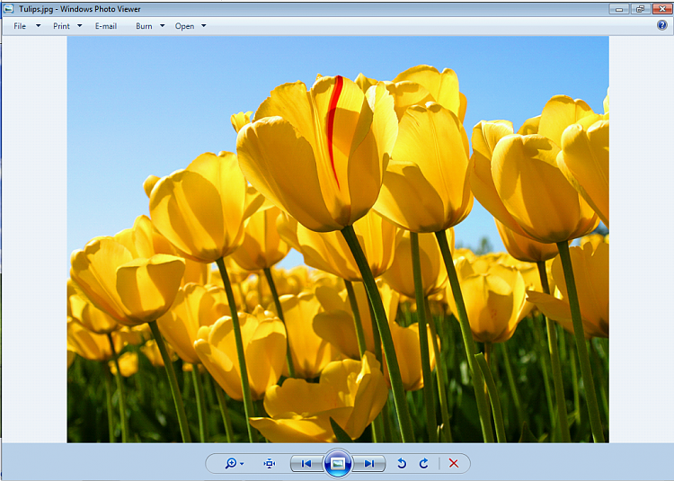 Customize background color in Windows picture viewer, How?-photo-viewer-w7.png