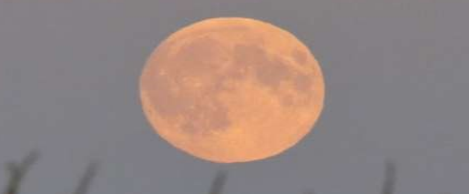 Click image for larger version.  Name:Moon.PNG Views:221 Size:71.9 KB ID:40222