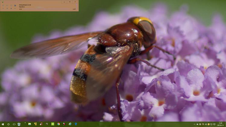 Click image for larger version.  Name:Screenshot (211).jpg Views:6 Size:131.2 KB ID:45303