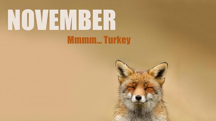 Click image for larger version.  Name:ThanksGiving-November-Wolf-Turkey-Wallpaper.jpg Views:13 Size:205.5 KB ID:46032