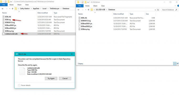 Click image for larger version.  Name:Error trying to copy database files.jpg Views:2 Size:144.5 KB ID:71940