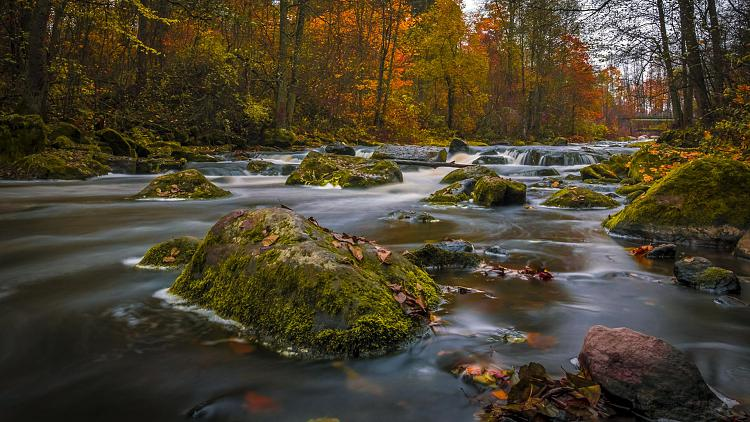 Click image for larger version.  Name:03737_colorsofautumn_1920x1080.jpg Views:149 Size:353.6 KB ID:7555