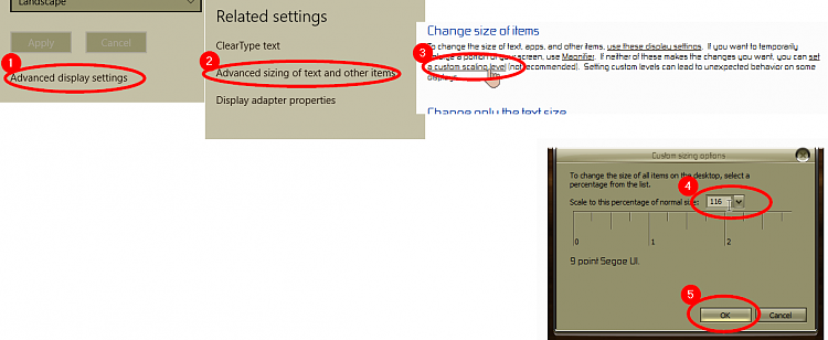 How to set Display size to 116% rather than 100% or 125%-000240.png
