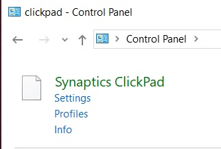 how do I stop windows 10 1903 from updating synaptics mouse driver-clickpad.jpg