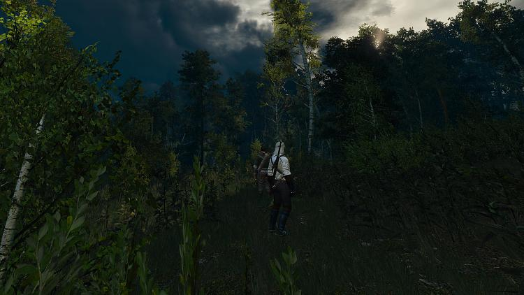 Click image for larger version.  Name:The Witcher 3 HighRes 2016.08.16 - 14.24.01.28.jpg Views:2 Size:823.6 KB ID:96503