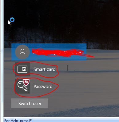 """How do I remove """"Smart Card"""" and """"McAfee Password"""" icon from the logon-icons.jpg"""