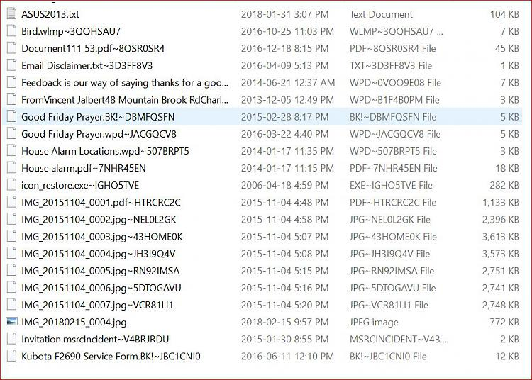 Duplicate Files with very odd file extensions-duplicate-example2-apr-10-2018.jpg