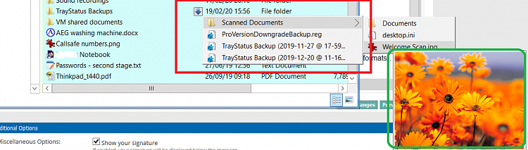 Is there a way to place the preview pane inside the file explorer pane-untitled.png
