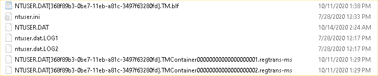 How much of this NTUSER.DAT stuff can I delete?-image1.png
