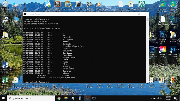 issue with deleting duplicate Desktop folder-screenshot-2021-03-25-162428.png