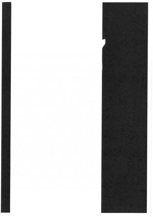 Photo attachment or file via quick print with white stripe in middle-f434db78-3c1b-4fc1-a642-4e90d4658ff8.jpg
