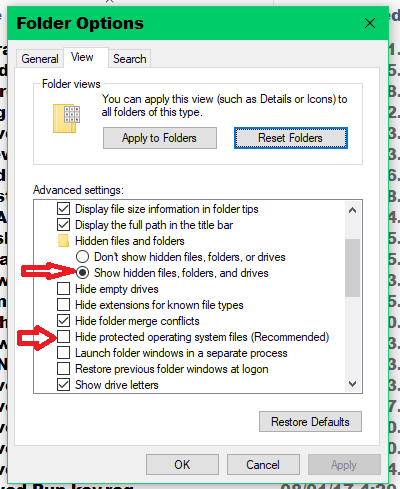 Rogue Folder Overriding File Character Limit And Changing File Names-show-hidden-system.png