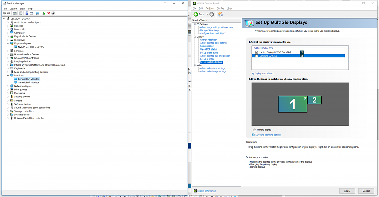 NVidia CP & Device Manager.png