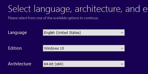 windows pro iso file