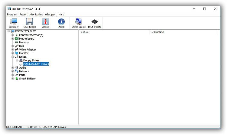 Hwinfo64Drives.jpg