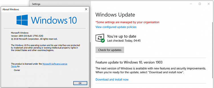 How to get Windows May 2019 Update? - Windows 10 Forums