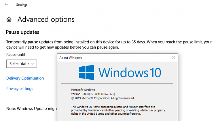 Window update to 1903-image.png