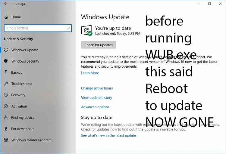 WUB.exe stopped my in process update-update2.jpg