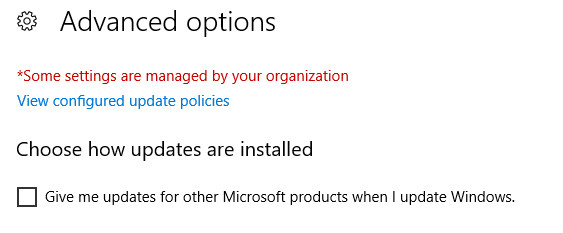 Stop Office updates-update-advanced-options.jpg