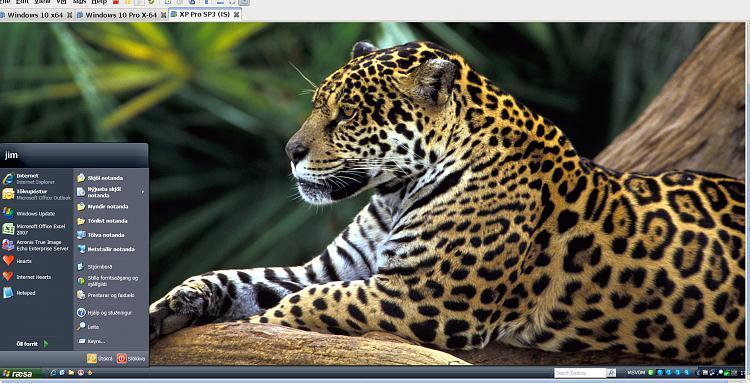 Office 97 running on Windows 10 Professional-w3.jpg
