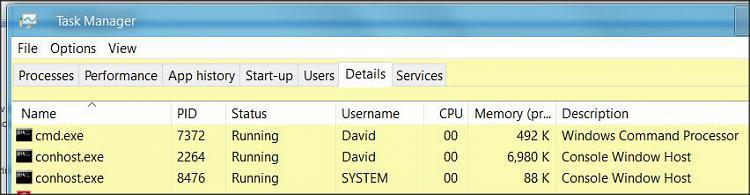 Windows Command Processor - High CPU Usage-1.jpg