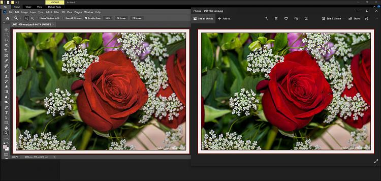 Windows Photo Viewer does not show correct colours edited by Photoshop-photoshop-v-photos-srgb.jpg
