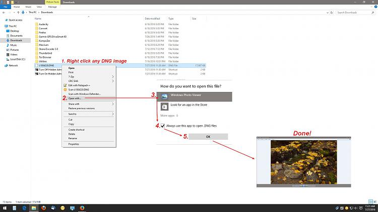 DNG Files in Windows Photo Viewer-dng.jpg