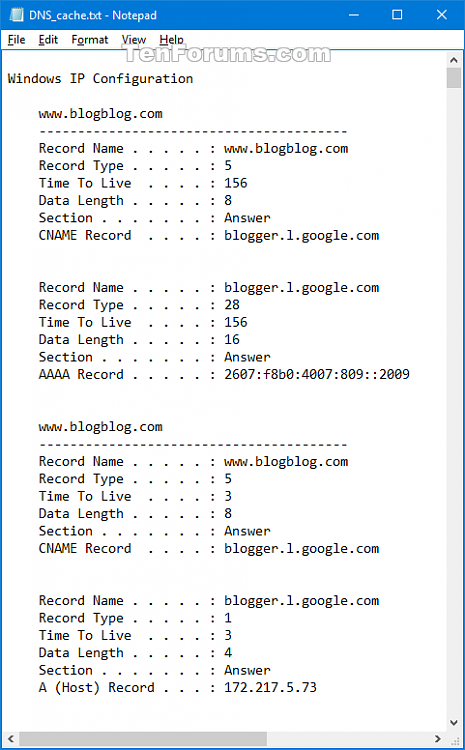 Display DNS Resolver Cache in Windows-dns_cache_txt_file.png