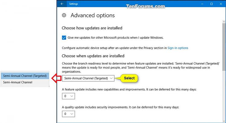 Windows Update - Defer Feature and Quality Updates in Windows 10-defer_feature_updates-2.jpg
