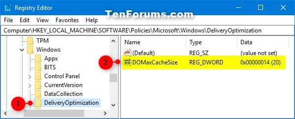 Name:  Delivery_Optimization_Max_Cache_Size_regedit-1.jpg Views: 733 Size:  43.4 KB