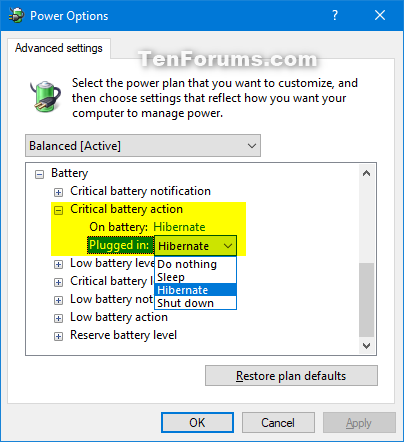 Add or Remove Critical battery action from Power Options in Windows-critical_battery_action.png