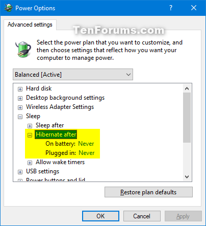 Add or Remove Hibernate after from Power Options in Windows-hibernate_after.png