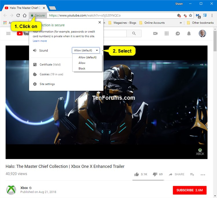 Allow or Block Sites to Play Sound in Google Chrome-site_information.jpg