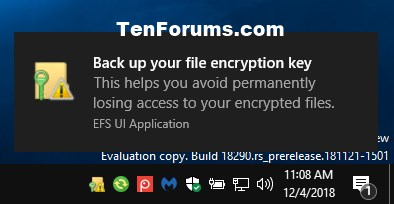 Encrypt or Unencrypt Offline Files Cache in Windows-back_up_your_file_encryption_key.jpg